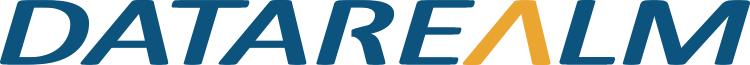 Data Realm logo